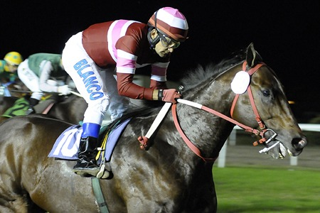 Quick Call (Easing Along) brilló en Handicap (1000m-Pasto-SI). - Staff ElTurf.com